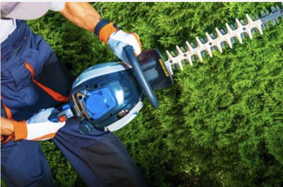 Landscape Maintenance Trimming Hedges