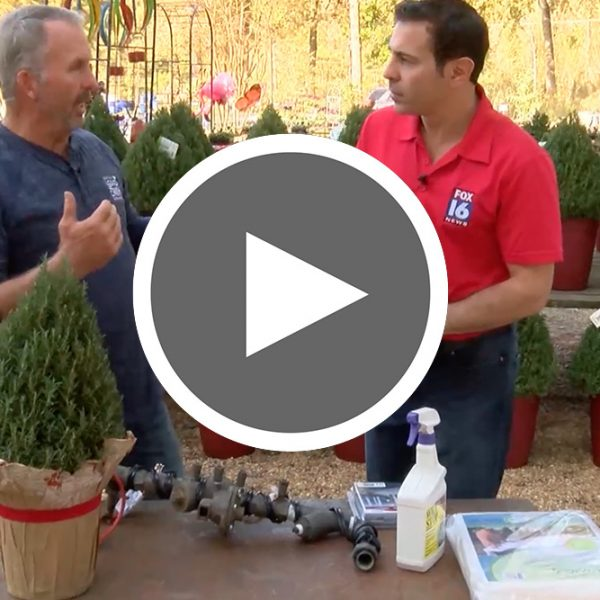 Video thumbnail of video for preparing for winter video - The Good Earth Garden Center